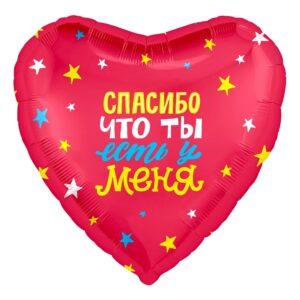 Fol'girovannye-figury-v-Voronezhe-95